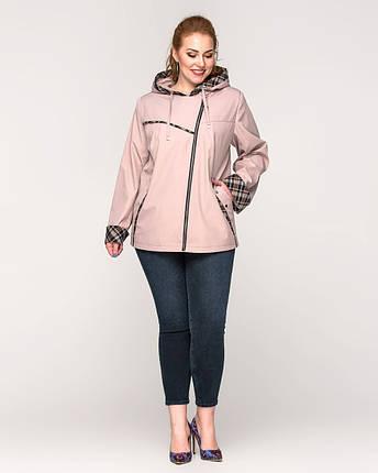 Женская куртка- ветровка  с капюшоном батал - М 4145, фото 2