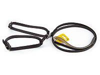 Поводок со шлеей COLLAR для малых пород собак, чёрная 05471