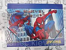 Папка пластиковая  на резинках А4 для мальчика  Spider-Man