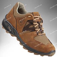 Военная обувь демисезонная / трекинговые тактические кроссовки PEGASUS Stimul  (coyote)