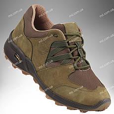 Военная обувь демисезонная / трекинговые тактические кроссовки PEGASUS Stimul  (olive)