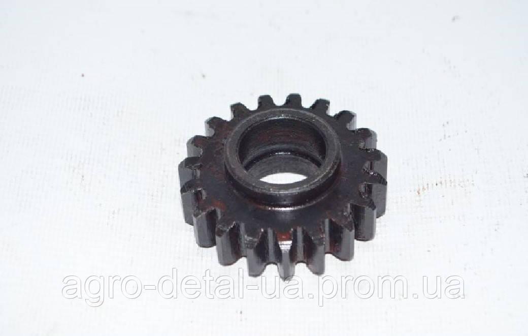 Шестерня СШ24.22.103-2 промежуточная привода гидронасоса трактора Т 16,СШ 2540
