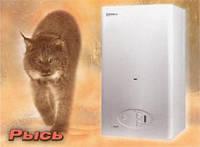 Газовый котёл Protherm РЫСЬ LYNX 24 ВА (Дымоход) Газовый котёл