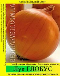 Семена лука «Глобус» 10 кг (мешок)