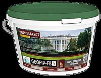 GEOFIP-FB5-Жаростійка фарба для бетону (до 1 200 ºС), фото 1