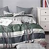 Комплект постельного белья сатин твилл Вилюта полуторный 391