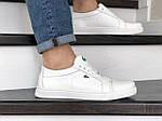 Мужские кроссовки Lacoste (белые) 9053, фото 3
