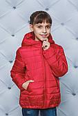 Демисезонная курточка для девочки (2 цвета)