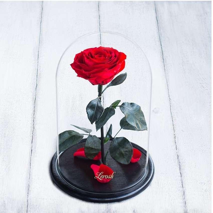 Стабилизированная роза в колбе Lerosh - Premium 33 см, Красная SKL15-138931