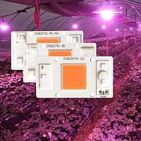 Светодиодный фито модуль COB LED 50W AC220 40*75мм для растений, фото 1