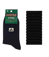 Мужские житомирские носки хлопковые 42-45 | 12 пар