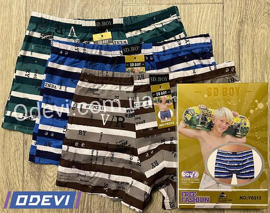 Підліткові труси шортики SD.BOY бавовна + бамбук, фото 2