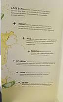 Aloe Verа гель питьевой Алоэ Вера Иммун Плюс Имбирь с  селеном 1л, LR, фото 3