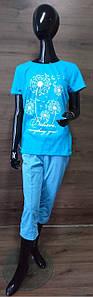 Голубая пижама с бриджами и футболкой Одуванчик 42-60 р