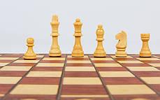 Шахматы, шашки, нарды 3 в 1 деревянные с магнитом W7703H, фото 3