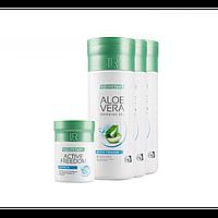 Ежемесячный набор LR Health & Beauty Lifetakt Pro Activity, 1 упаковка, 80881