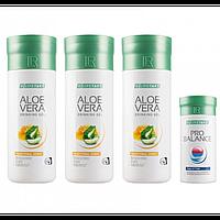 Ежедневный набор LR Health & Beauty Lifetakt Daily Essential, 1 упаковка, 80730