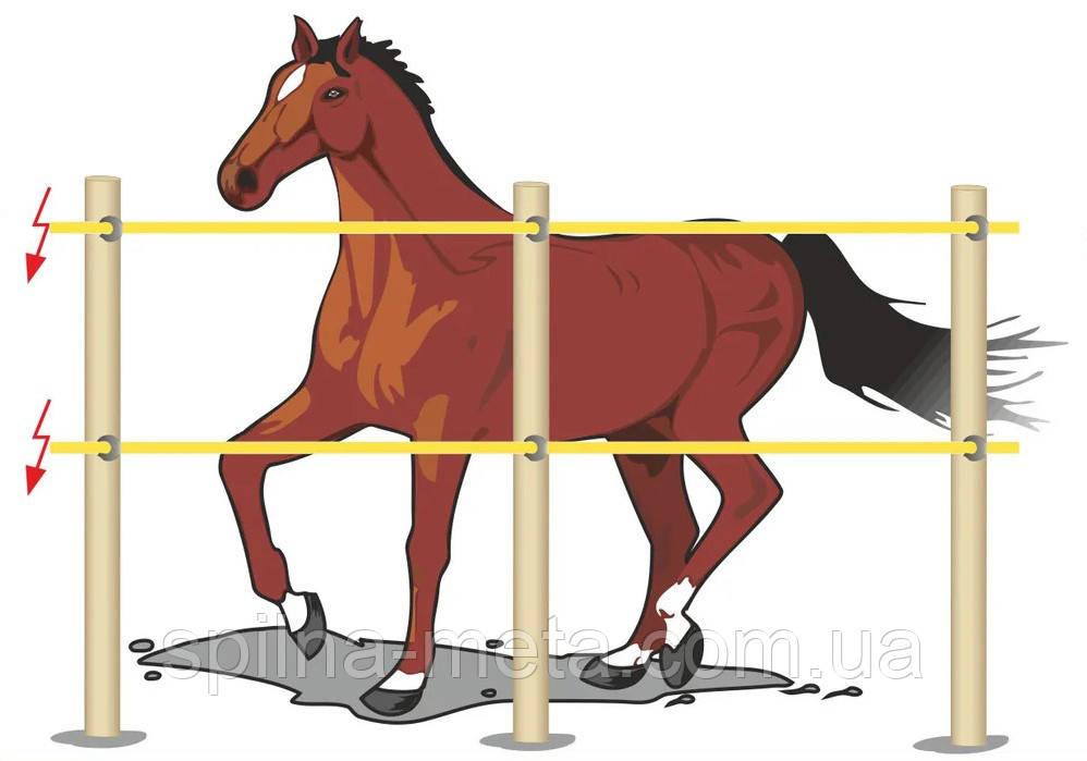 Электропастух Corral B170 для лошадей, комплект на периметр 200 м (в одну линию)