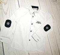 Рубашка для мальчика Gucci 6-9 лет