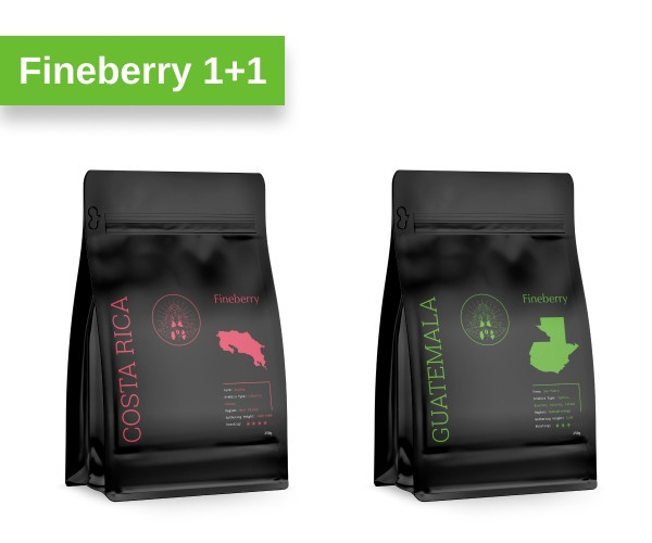 Кофе Fineberry молотый Costa Rica 250 г + Guatemala 250 г