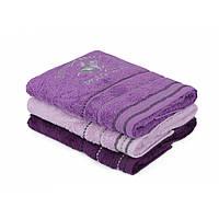 Набор полотенец Beverly Hills Polo Club - 355BHP2276 Purple, Dark Purple, Light Purple 50*90(3)