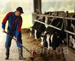 Робітники на фермерське господарство в Канаду, SK, фото 3