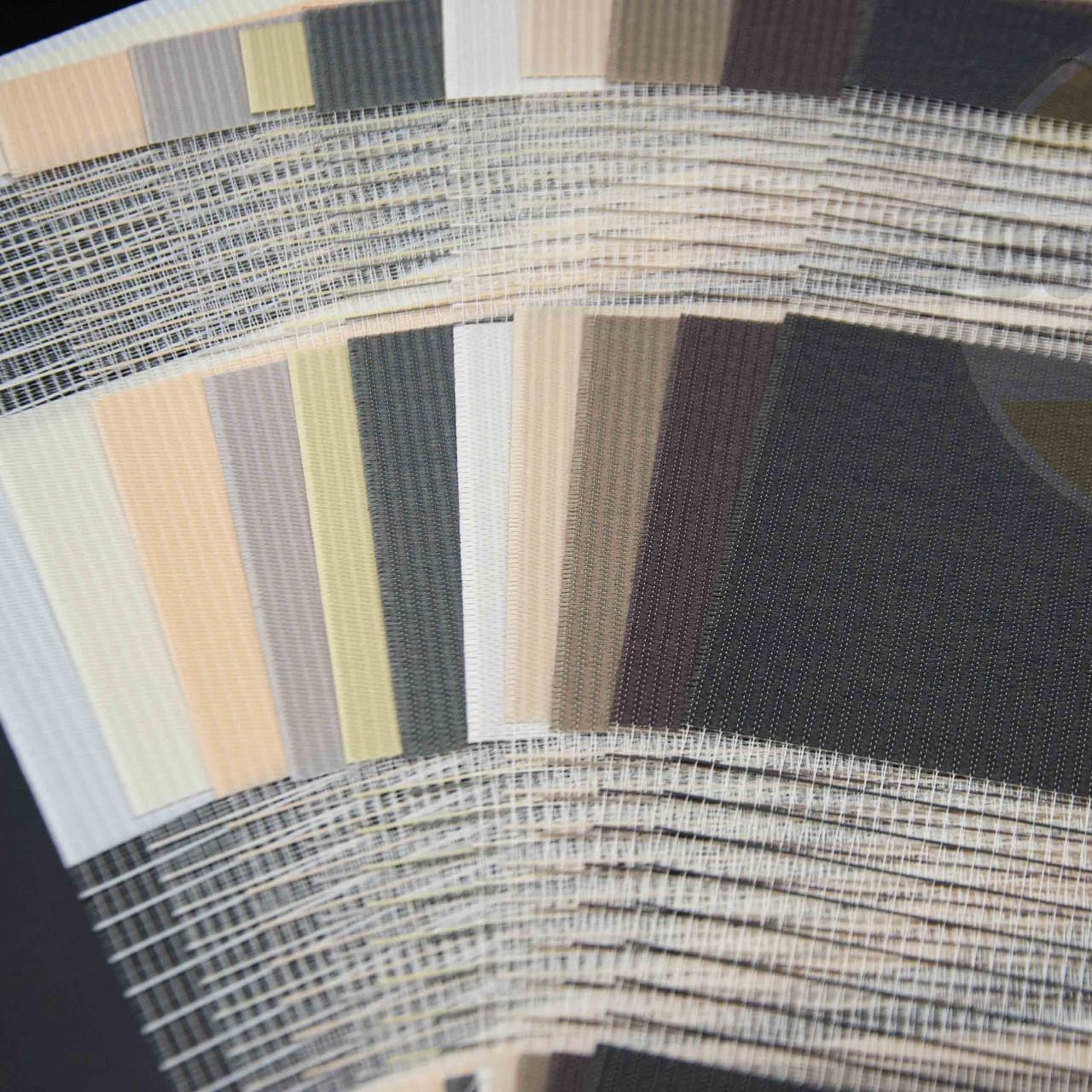 Рулонні штори День-Ніч DS Pennie (11 варіантів кольору)