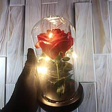Роза в колбе с Led подсветкой красная, ночник, романтический подарок (Реальные фото!), фото 2