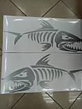 Виниловые наклейки СКЕЛЕТ РЫБЫ  24х14 см  2 цвета, фото 3