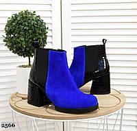 Замшевые ботинки на каблуке 36-40 р электрик+чёрный лак рептилия, фото 1
