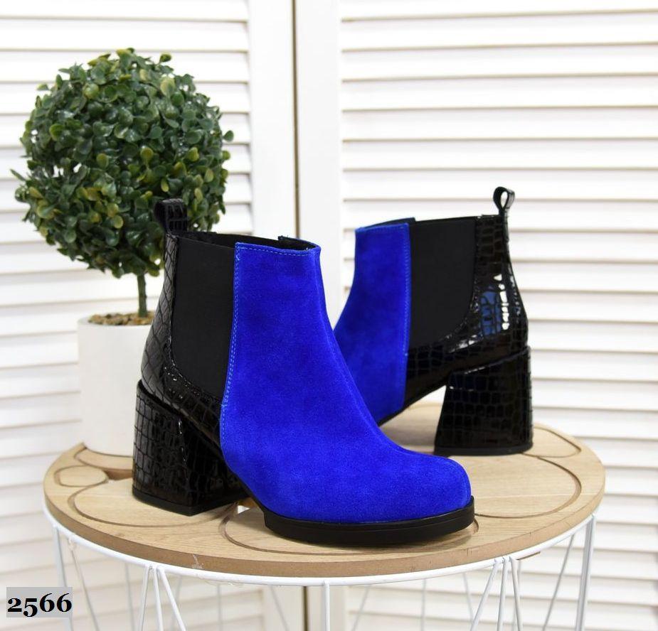 Замшевые ботинки на каблуке 36-40 р электрик+чёрный лак рептилия
