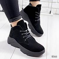 Ботинки женские Charl черные 8566 замша