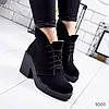 Ботинки женские Tasha черные 9069 замша