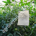Клеевая ловушка от насекомых Sticky Trap черная 25x40 см, фото 2
