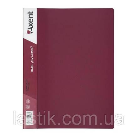 Дисплей-книга 30 файлів. А4, фото 2