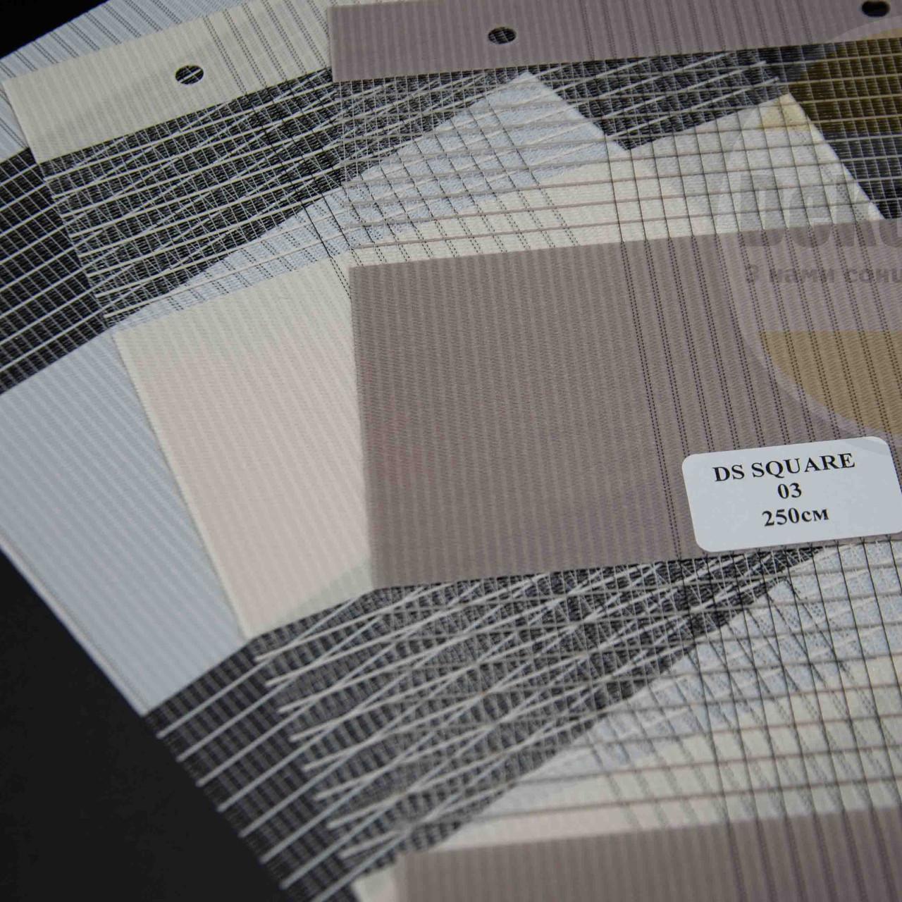 Рулонні штори День-Ніч DS Square (3 варіанта кольору)