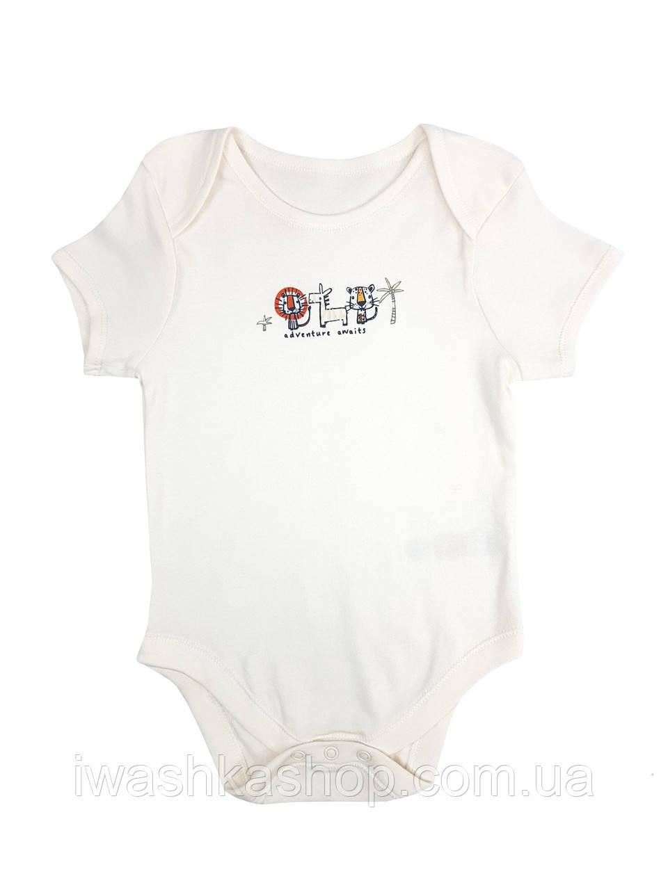 Боди с короткими рукавами молочного цвета с животными для мальчика 1,5 - 2 года, размер 92, Primark baby.