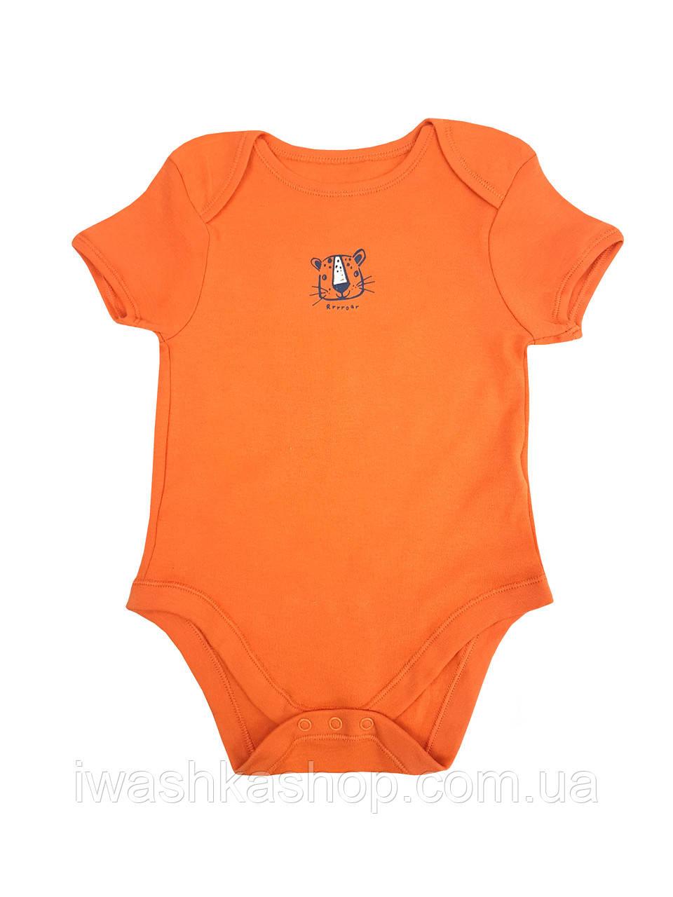 Боди с короткими рукавами с тигром для мальчика 1,5 - 2 года, размер 92, Primark baby.