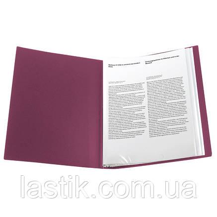 Дисплей-книга 40 файлів (бордо), фото 2
