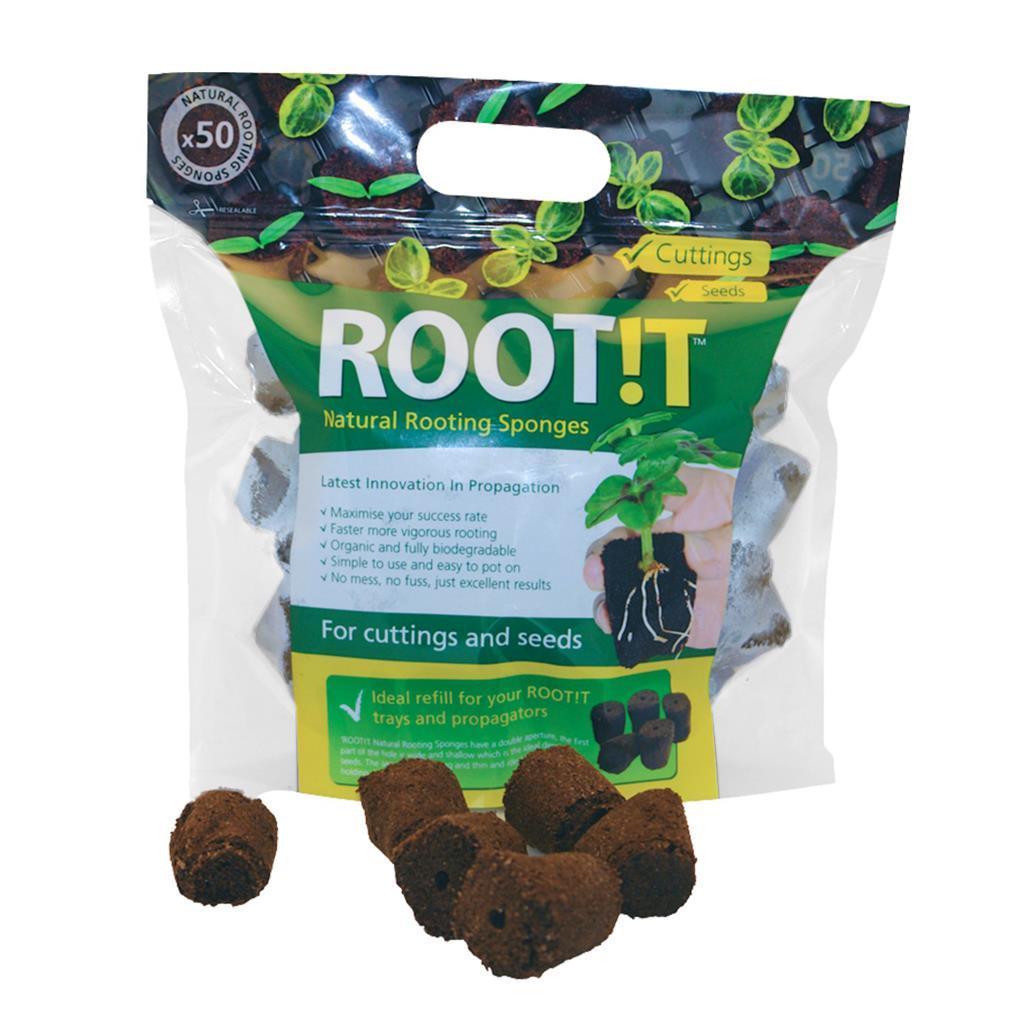 ROOT!T Natural Rooting Sponges - Натуральні спонж для пророщування (50шт в упаковці)