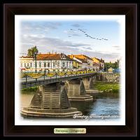 Еко-картина Місто Ужгород