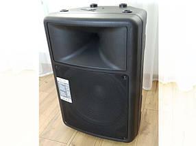 Комплект MAG PS15 пассивная двухполосная акустическая система + Подарок усилитель BBK 110 Вт, фото 3
