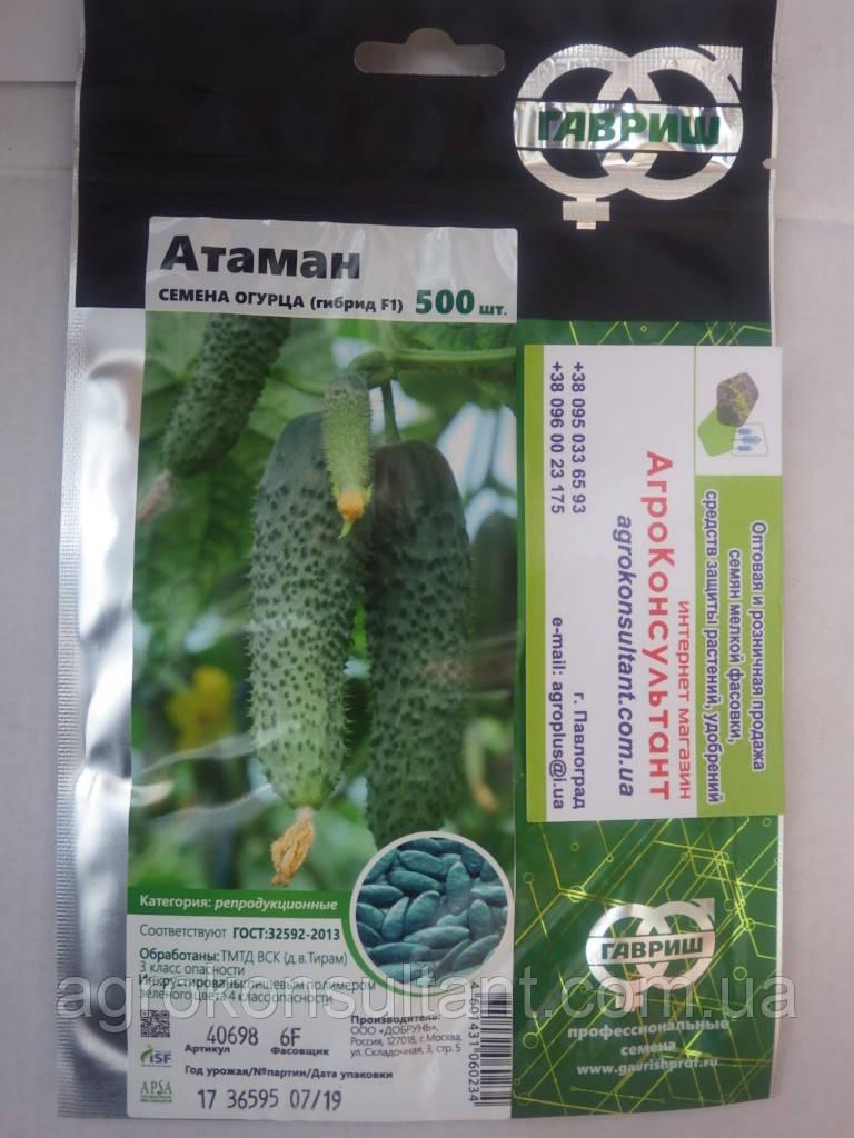 Семена огурца Атаман F1 (Гавриш), 500 семян — партенокарпический, раннеспелый (41-46 дн.)