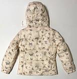 Куртка Весна-Осень для девочек 3-8 лет, фото 4