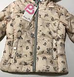 Куртка Весна-Осень для девочек 3-8 лет, фото 2