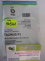 Семена свеклы Таунус F1 10.000 семян (Бейо/Bejo) — средне-поздний гибрид (118-120 дней), столовая, цилиндричес