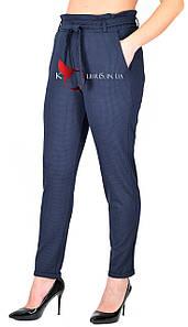 Брюки-лосины трикотажные манжет синий цвет размеры от 48 до 54