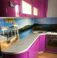 Кухонная пристенная панель Хортица