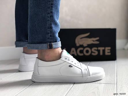 Мужские кроссовки Lacoste,кожаные,белые, фото 2