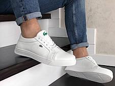 Мужские кроссовки Lacoste,кожаные,белые, фото 3